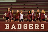 2015 Lady Badger Volleyball